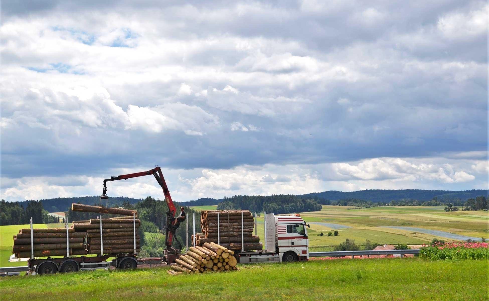 Hengstberger LKW vor Waldviertler Kulisse
