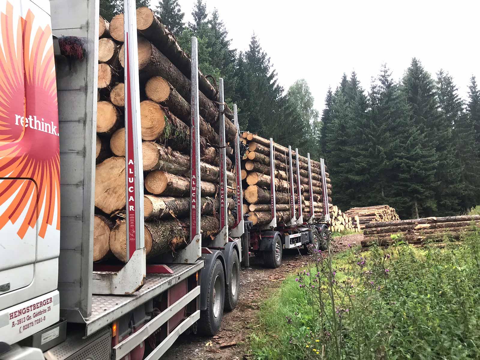 Hengstberger LKW storaenso im Wald